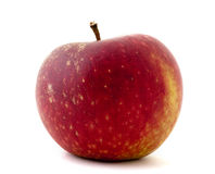 Fresh red apple isolated on white. In studio royalty free stock photos