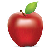 Fresh Red Apple. Vector illustration of fresh red apple with green leaf, realistic gradient mesh design, isolated on white Stock Image