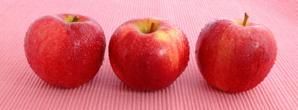 Fresh Red Apple with water drop Royalty Free Stock Images