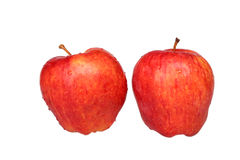 Fresh red apple. On a white background stock photo