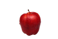 Fresh red apple. On a white background stock images