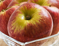 Fresh red apples Royalty Free Stock Images