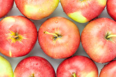 Fresh red apples closeup Stock Images