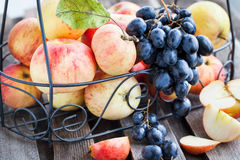 Fresh red apples and dark grape Royalty Free Stock Photography