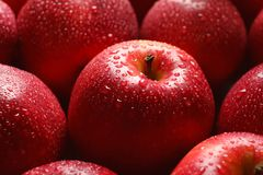 Fresh red apples with drops of water. Closeup Royalty Free Stock Photo
