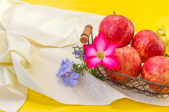 Fresh red apples with flowers Stock Images