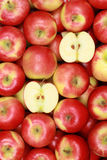 Fresh red apples forming a background Stock Photography