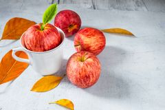 Fresh red apples with green leaves stock image