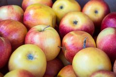 Fresh red apples in a market, healthy food.  royalty free stock photos