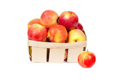 Fresh red apples in wooden basket isolated, autumn harvest Royalty Free Stock Image