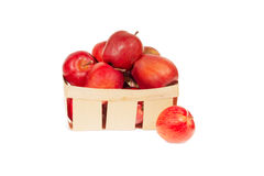 Fresh red apples in wooden basket isolated, autumn harvest Stock Image