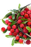 Fresh red bayberry Royalty Free Stock Photography