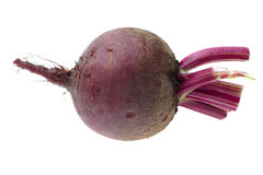 Fresh red Beet on a white background Stock Image