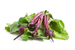 Fresh red beetroot Royalty Free Stock Photos