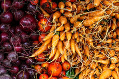 Fresh red beets and carrots. Background Stock Photography