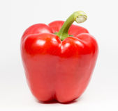 Fresh red bell pepper or capsicum on white background Royalty Free Stock Photography