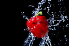 Fresh red bell pepper gets hit by a water stream Stock Photography