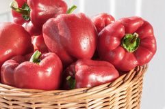 Fresh red bell pepper Stock Photography
