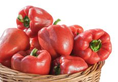 Fresh red bell pepper Royalty Free Stock Photo