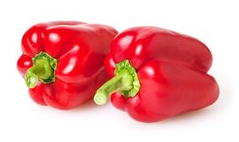 Fresh red bell peppers isolated on white stock image