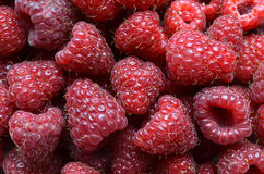 Fresh red berry fruits Royalty Free Stock Photos
