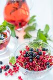 Fresh red and black currant in glass vase Royalty Free Stock Image