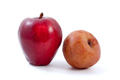 Fresh red and brown rotten apples. Isolated on the white background Royalty Free Stock Photo