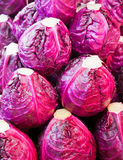 Fresh red cabbage stack Royalty Free Stock Images