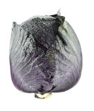 Fresh red cabbage Royalty Free Stock Image