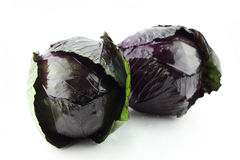 Fresh red cabbage Royalty Free Stock Photo