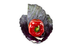 Fresh Red Capsicum with Red Cabbage Sheet Royalty Free Stock Photos