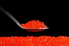 Fresh red caviar on a black background. Fresh red caviar in a spoon on a black background Stock Images