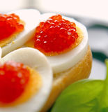 Fresh red caviar. Fresh red caviar and boiled eggs on the plate Stock Images