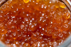 Fresh red caviar. Macro for party table Stock Image