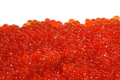 Fresh red caviar. Fresh red salmon gourmet caviar isolated on white Stock Images