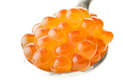 Fresh red caviar in spoon. Fresh red caviar on a spoon Stock Photography
