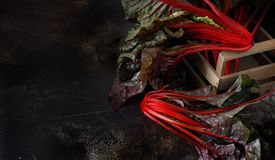 Fresh red chard. From a farmers market close up Stock Image