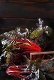 Fresh red chard. From a farmers market close up Royalty Free Stock Photo