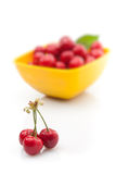 Fresh red cherries Royalty Free Stock Photos