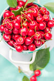 Fresh red cherry fruit green colander Royalty Free Stock Image