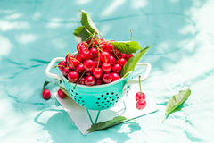 Fresh red cherry fruit green colander Royalty Free Stock Images