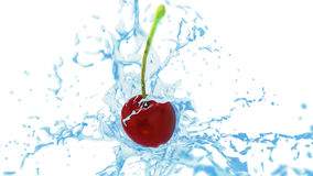 Fresh red cherry in splashes of water on white background Royalty Free Stock Photos