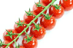 Fresh Red Cherry Tomatoes Royalty Free Stock Images