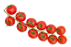 Fresh red cherry tomatoes on a branch Royalty Free Stock Photos