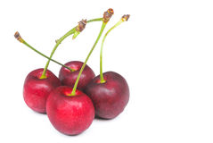 Fresh red cherry on white background Stock Photography