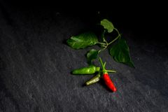 Fresh red chili and green chili on stone background. Stock Photos
