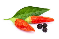 Fresh Red chili pepper and black pepper. Royalty Free Stock Images