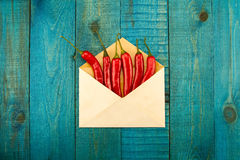 Fresh red chili pepper in a blue envelope Royalty Free Stock Photos