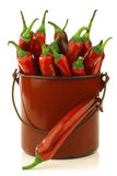Fresh red chili peppers Royalty Free Stock Photos