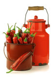 Fresh red chili peppers in a  brown metal pot Royalty Free Stock Photography